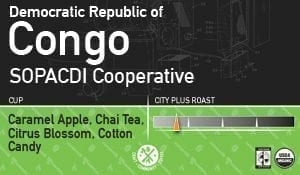 Democratic Republic of Congo, Sopacdi Cooperative Kalungu Kivu